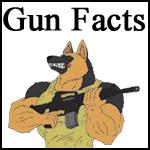 DDG-ASDP-Gun-Trivia-Button